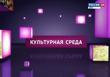 «Культурная среда» на канале «ДОН-ТР» с А.Б. Рустамянц и А.С. Домановым