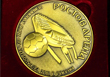 Джазовая школа получила медаль с изображением стадиона «Ростов-Арена»